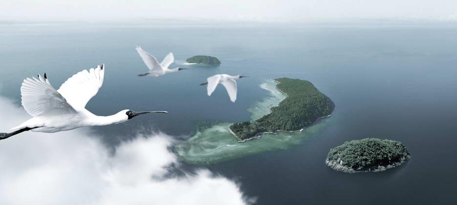 海王九岛冷海域——大连海参的天然牧场.